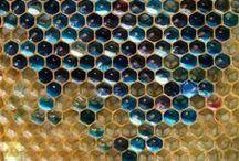 HONEYBEE HONEY / Honeybee, bee, bees, honey, wax, beeswax, pollination, wings, fly, food, plants, beehive, honeycomb, important, yellow, black, fascinating, insects, colony, imker, save