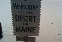 The fun side of Maine