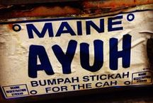 Only in Maine...