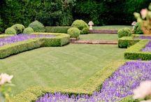 the manicured garden