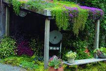 Uterum,trädgård,....garden...puutarhoja / Idéer för trädgården