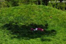 Jardin: activités physiques
