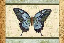 lepkék, pillangók / Gyönyörű #lepkék és #pillangók