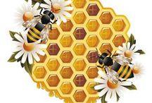 méhek / #méhecske