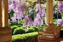 garden and porch / tuin en veranda