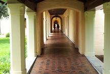 I LUV the Rollins College Campus! / by ILuv Winter Park