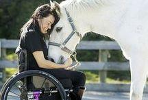 Riabilitazione Equestre / Ho scelto di pubblicare le immagini che rappresentano al meglio la relazione cavallo-bambino, con riferimento ai bambini affetti da disabilità di varia natura. Queste immagini evidenziano il fatto di quanto il cavallo sia utile nel sostegno e nella riabilitazione di questi bambini.