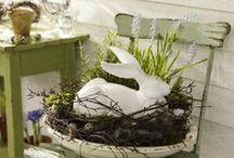 HoPPy EaStEr / Pastels, egg hunts, bunnies, and Jesus.... / by Kelly Garrington