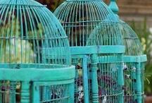 Birdcages / Always better empty...and Birdhouses, always better full! / by Susan Garnett