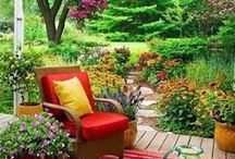 Gorgeous Gardens / by 3 Day Blinds