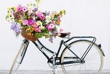 Cycle Style / My moodboard for cycling in style