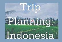 Trip Planning- Indonesia