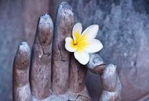 Yoga in Bali / Best yoga retreats, masters, practices and views on the Island of Gods
