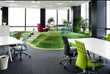 Offices and Workspaces / Offices and workspaces: our home away from home / by Techinline