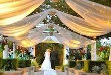 Dekoracje - ślub i wesele w plenerze