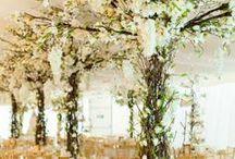 Dekoracje - drzewa