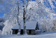 calling out winter / Winter is not a season, it's an occupation.  Sinclair Lewis