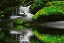 ! * ( WATERFALLS ) LAKE : POND : RIVER : SEAS ) / Beautiful Waterfall, Lakes, Ponds, Rivers, Seas ALL THINGS WATER / by Gillian Haberfield