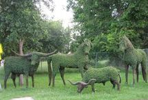 ! # ! ( A. TOPIARY  : AMAZING SCULPTURE'S ) / Beautiful Topiary Sculptures / by Gillian Haberfield