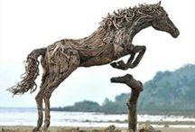 ( DRIFT WOOD SCULPTURES ) / Drift wood Sculptures / by Gillian Haberfield