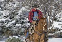 Cowboys / by Tony Holt