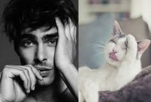 Hommes&chats