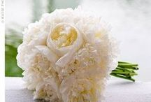 Bridal Bouquets / Beautiful Bridal Bouquets  Board Brought To You By... www.myfauxdiamond.com / by My Faux Diamond