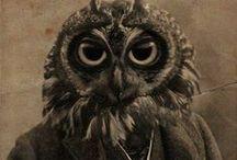 Antropomorphics / Vintage portrait with animals head