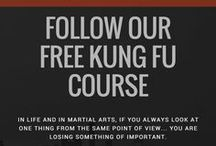 Free Kung Fu Course (ONLINE & COMPLETE) / A beginner to expert 6 Dragons Kung Fu Guide divided in lessons (with exercises, techniques, tutotials, etc.), chapters and modules.