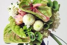 Virágcsokor - Bouquet / Virágcsokrok, virágdekorációk További ötletek: http://balkonada.cafeblog.hu/?s=vir%C3%A1gcsokor&byBlog=1