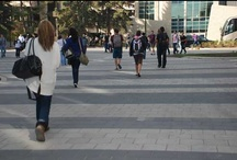 Colleges and Universities / Many colleges and universities are leading the way in designing campuses with sustainable practices.  Their goal: to reduce the environmental impact of higher learning institutions while providing a valuable education on sustainable building practices to tomorrow's leaders.   Concrete pavers and permeable pavers improve the quality of life for an environment and its users by reducing stormwater runoff, conserving land, while serving as a durable wearing course for traffic.
