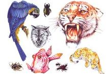 Animal Tattoo Ideas / Excellent Tattoo Ideas and design for body art. This board excellent for those people who are searching for unique animal tattoos