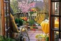 Balkonada / Az életterünk növényekkel való berendezése során kiélhetjük művészi hajlamainkat. Épp úgy, mintha egy festményt készítenénk. Szabadon szárnyaló fantáziával színekkel, formákkal, ritmusokkal, illatokkal játszhatunk. Egy balkon berendezését, átalakítását ráadásul olcsón, akár évszakonként megtehetjük.Nyugodtan kísérletezz Te is!  Vidám színpompát kívánok minden balkonra, teraszra, erkélyre, loggiara és a franciaerkélyekre is: Nagy Jucó, a balkonfelelős, http://balkonada.cafeblog.hu