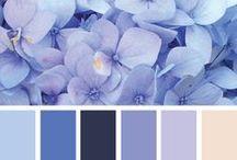 Colours & Textures