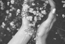 creation // flora