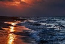 ~~ Sea ~~