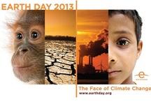 International Days 2013