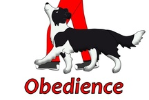 Obedience / by S. Schnuppadoo