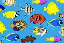 Wasserwelten / Fische, Korallen und Meeressäuger von Schnuppadoo. / by S. Schnuppadoo
