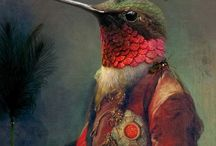 Paradijsvogels / Bird or human?