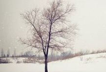Winter  / by Kate Wagstaff