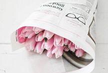 F l o r e s _()_ / Las flores como los besos ni se piden, ni se roban ... Se regalan.