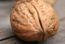 frutos secos / Los frutos secos son semillas cubiertas por una cáscara más o menos dura, según las especies. Las cuáles son Almendras, anacardos, avellanas, cacahuetes o maní, nueces, pistaches, semillas de Girasol, semillas de sésamo, piñones, castañas, semillas de calabaza, frutas disecadas como orejones de algunas frutas, dátiles e higos secos, entre otros.