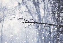 Winter / Hiver ❄️
