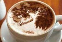 Kedicikler - Cats