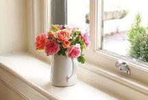 ^^flowers^^