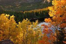Herbst / Autumn