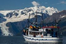 Alaska Travel / Thinking of traveling to Alaska? Look no further!