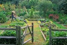 Farmdreaming