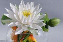 МОИ РАБОТЫ (Татьяна Пянзина) /    Все цветы полностью ручная работа. Леплю из фабричных флористических полимерных глин. Вы можете подобрать готовую работу, или заказать: декор для дома, авторский подарок, интерьерную композицию, букет, необычную шкатулку, комплект из нескольких работ.   Узнавайте, пишите: primrose.t@ya.ru  WhApp+79651942586 Заказать можно в сообщении и на  http://www.livemaster.ru/primrose  Приглашаю в мир творчества и радости. Научу превращать эмоции в цветы! Обучение с любого уровня.